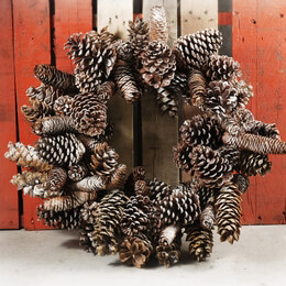 """Pine Cone Wreaths Natural Sugar Pine Cone Frosted 24"""""""