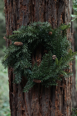 Pine Wreath 18in