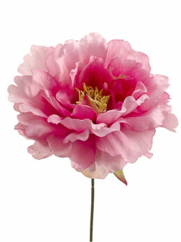 "Pink Silk Peony (6"" wide) Flower Heads (Bouquet of 24)"