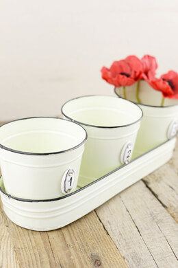 Herb Planter Pots with Tray
