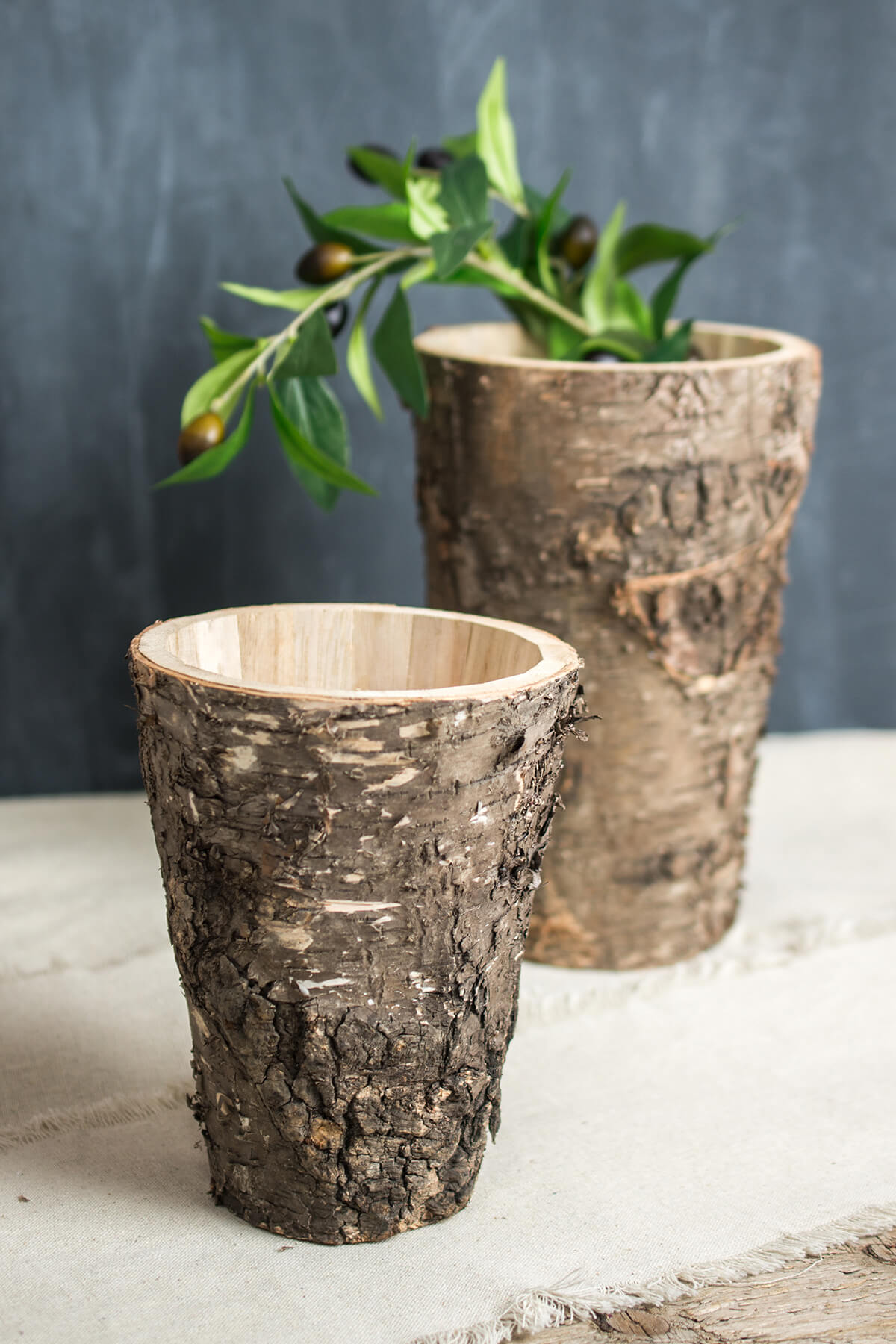 "Birch Bark Vases Set of two 7"" & 9.5"""