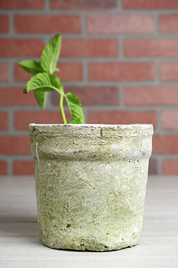"""Weathered Clay Flower Pot 6.5"""""""