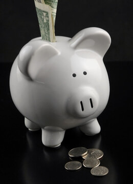 Precious Pig Bank 5 inch