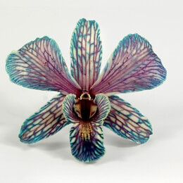 Preserved Orchid Flowers in Butterfly Teal (30 flowers)