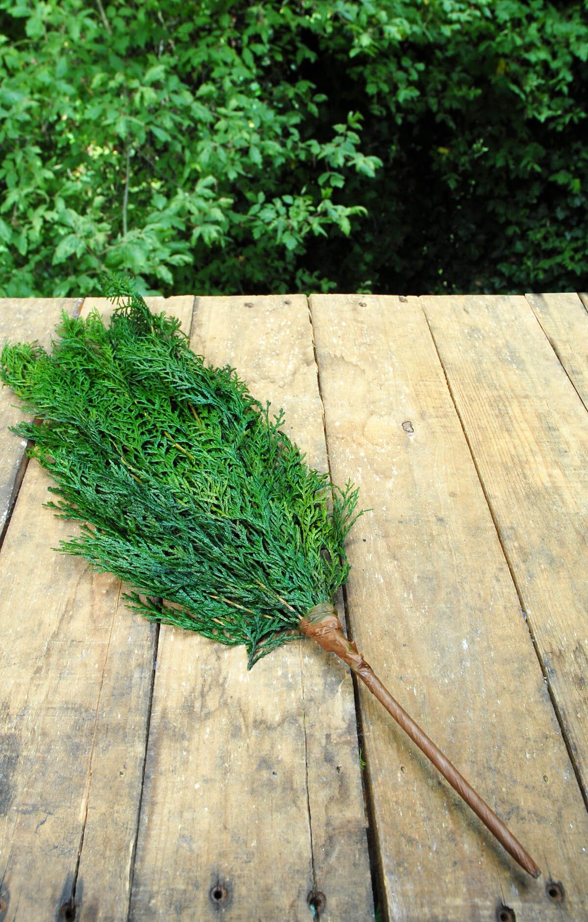 Preserving Tree Branches For Decoration Natural Tree Branches Sale 20 60 Off Saveoncrafts