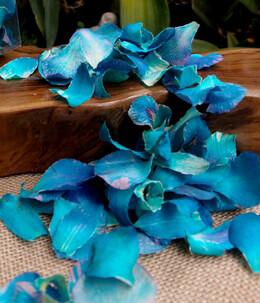 Preserved Orchid Petals Blue Violet box