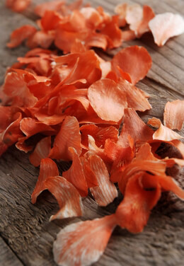 Preserved Orchid Petals Orange