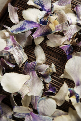 Preserved Orchid Petals Violet Butterfly