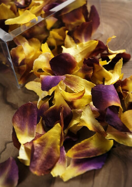 Preserved Orchid Petals Yellow and Burgundy