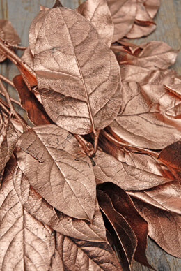 "Copper Preserved Salal Branches 20"", 12 Branches"