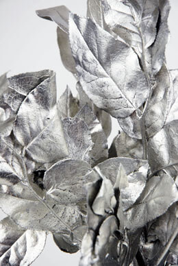 "Silver Platinum Salal Branches 20"", 12 Branches"