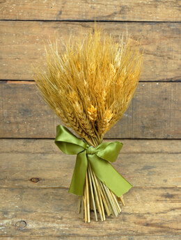 Preserved Wheat Bouquet 9.5in