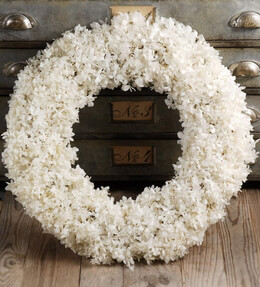 Hydrangea Wreath Preserved White 6.5in