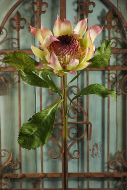 Proteas Silk Flower Yellow & Pink