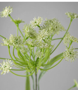 Queen Anne�s Lace Artificial