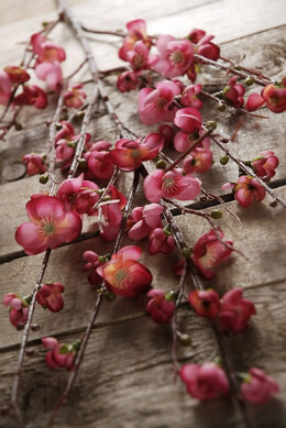 Quince Branch Artificial Burgundy 45in