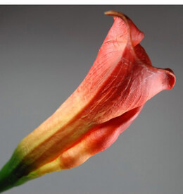 Artificial Calla Lily Blood Orange