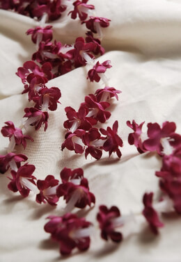 Red Jasmine Silk Flower Leis (Pack of 12)
