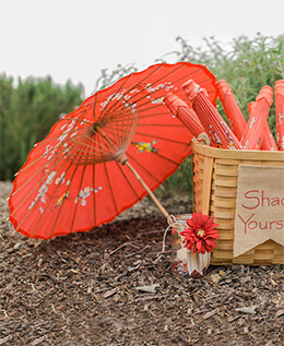 Paper Parasols Red Cherry Blossom & Bird Parasols 32in