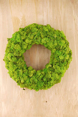 "20""  Spring Green Reindeer Moss Wreath"