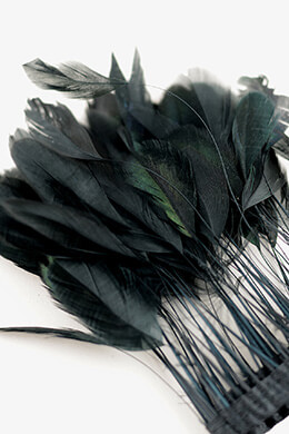 "Coque Black Feathers Rooster 9"" x 1/4 Yard"