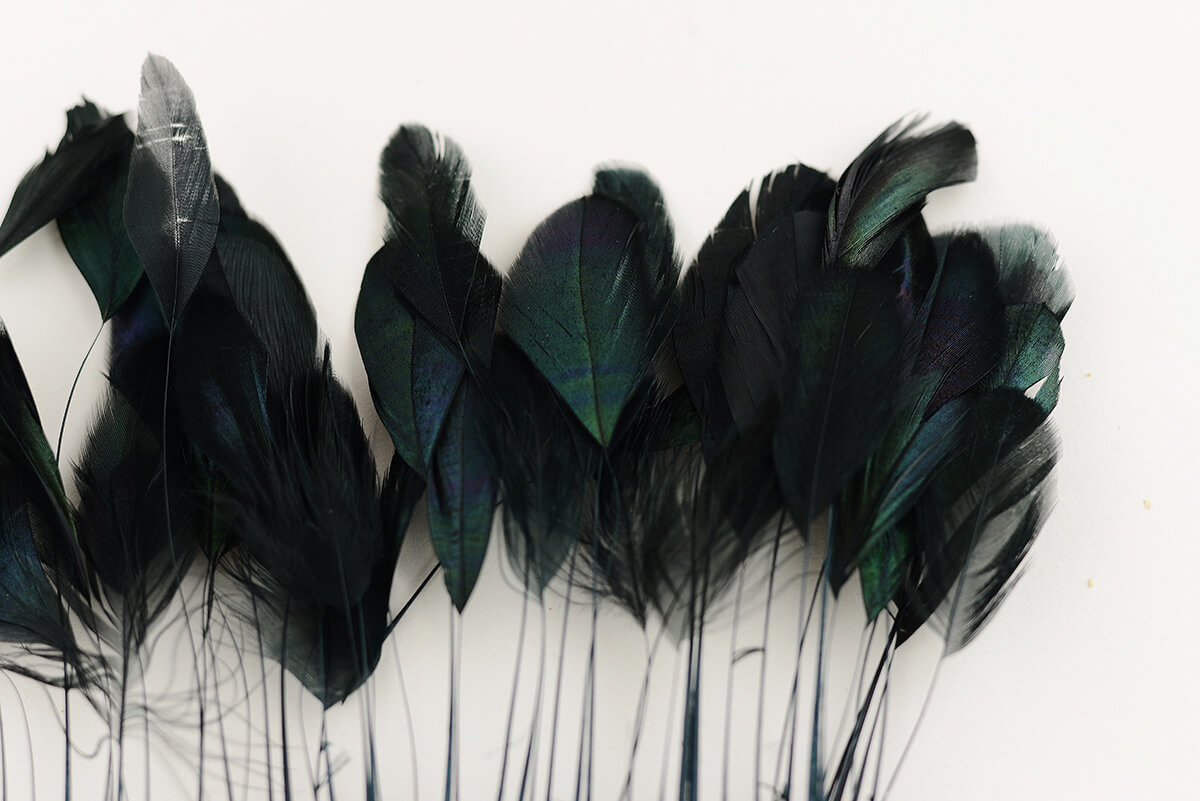 Rooster Feather Trim - 4-6in Coque Feathers (1/4yd length)
