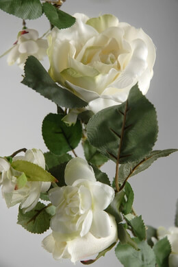 Rose Garland White 6 ft