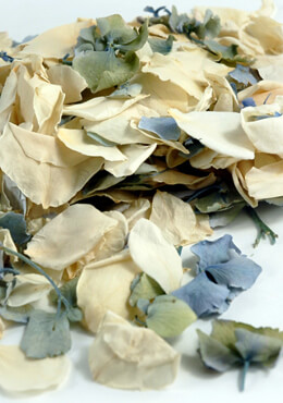 Preserved Hydrangea & Rose Petals  5 cups