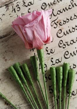 Flower Stems|Pack of 24