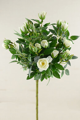 Cream White Silk Rose Topiary Spray   21in