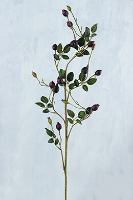 Rosehip Branch Burgundy 31in