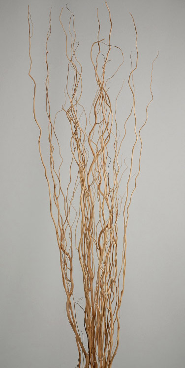 Sanded Natural Willow Salix Branches 46 Inch