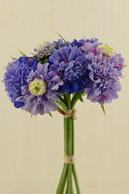 Scabiosa Bouquet Blue 14in