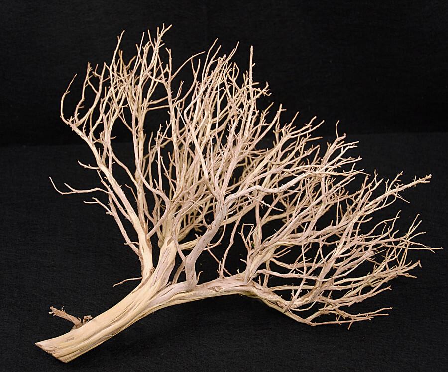 """Mini Sculpture Tree Sandblasted   18""""-24"""""""
