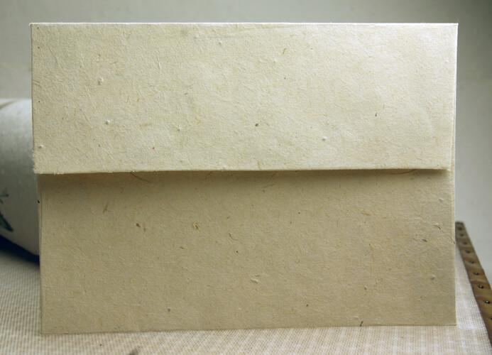 10 Seeded Envelopes