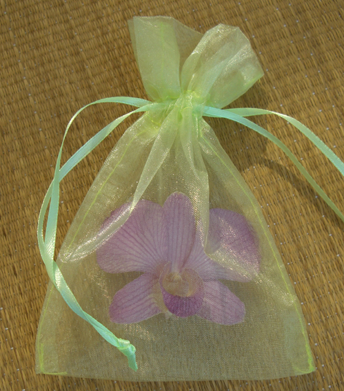 10 Chartreuse Green 4x6  Favor Bags