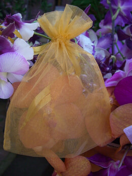 Organza Favor Bags Gold 5in | Pack of 24