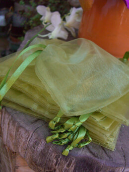 12 Apple Green Sheer Drawstring Favor Bags 5x6