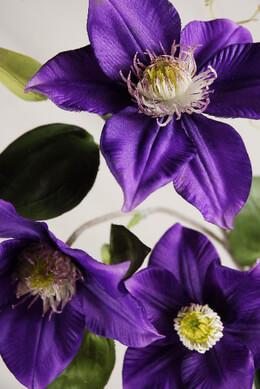 "Silk Clematis 24"" Violet Deep Purple"