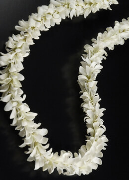 Silk Flower Large White Jasmine Lei Garland