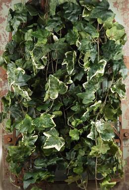 "Silk Ivy Oxford Green & White Wall 32"" x 18"" Mountable"