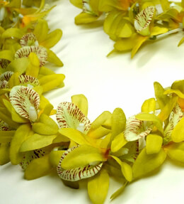 Silk Leis Yellow Green Orchids