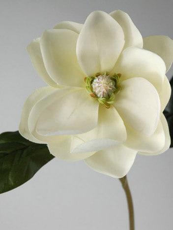 "Silk Magnolia Flowers 25"""