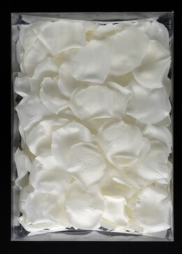 Silk Rose Petals White | 200 Petals