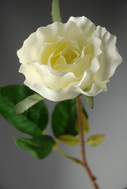 Silk Roses Cream White 26""