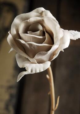 Silk Roses Vintage Beige