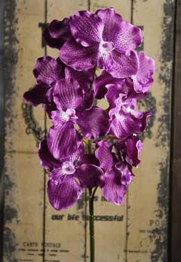 Silk Orchids Purple 29in