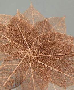 """Skeleton Leaves 1-1/2"""" Copper Metallic Leaves (20 leaves/pkg)"""