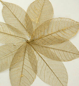 "Skeleton Leaves 3"" Gold Metallic Leaves (pkg. 10 leaves)"