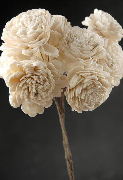 10 Sola Flowers  on Wire Stems